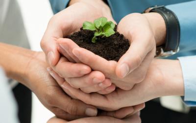 Zorg voor continue groei